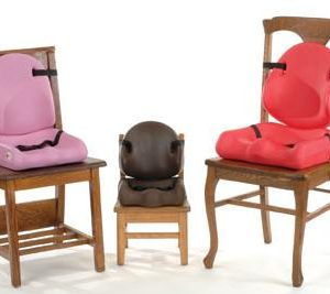 Special-Tomato-Chair-Liners[1]