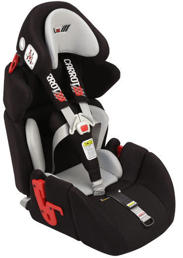 Car Seats / Harnesses